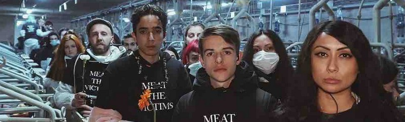 Get involved with: Meat The Victims
