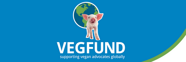 Hand out pro-veg booklets and show iAnimal virtual reality videos!