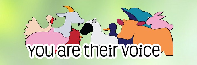 Know code or graphic design? You Are Their Voice needs you!